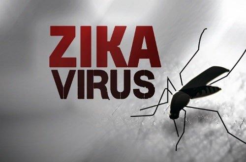 La cura per lo Zika grazie ad un vermifugo?
